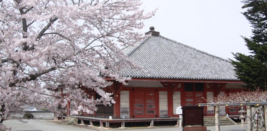 国宝・浄土寺と四季1
